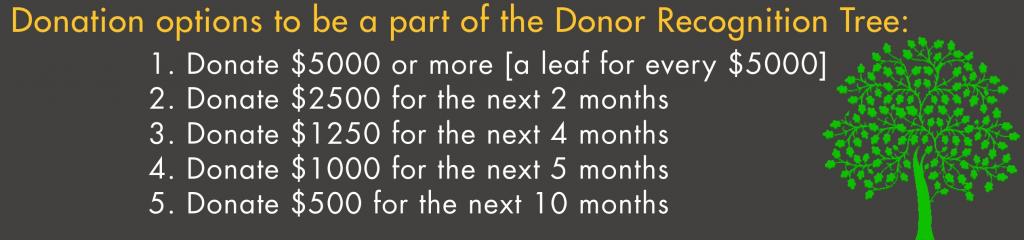DonationOptions